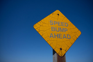 "This Lent ""Speed Bump"" Your Way to Holiness"