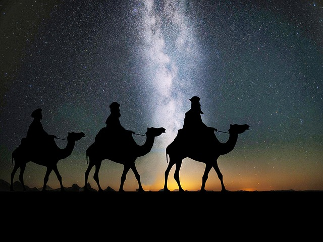 Wishing You a Blessed Advent and a Joyous Christmas